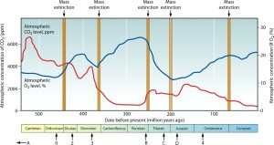 Changes in atmospheric oxygen and carbon dioxide since the end of the Precambrian. Image: Dorell and Smith, 2011; ec.asm.org
