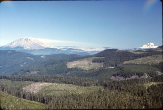 Mt. St. Helens, Mt. Rainier on the right, August 1981